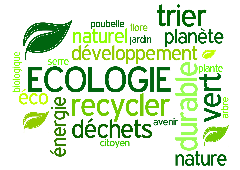 Les différentes actions des imprimeur pour l'écologie ainsi que la protection de l'environnement